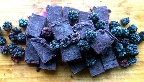 Raw Wild Berry Snickers Fudge